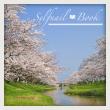 020415セルフジェルネイル桜