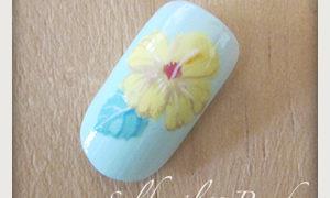 シックなハイビスカスの花の書き方-08