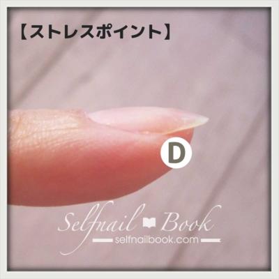 爪のストレスポイント