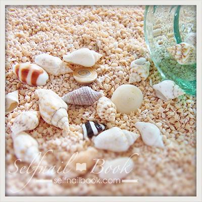 ポチ♪天然貝風のシェルシール